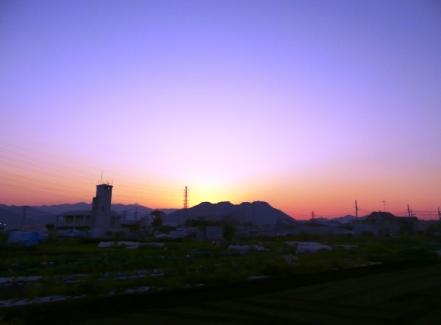 風の畑の夕焼け.JPG